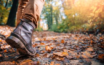 Wandelen voor minder stress en meer veerkracht